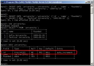 SQL auto increment