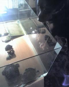 Костенурки