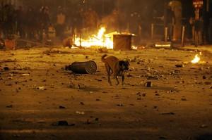 Снимка: Aris Messinis/AFP/Getty Images