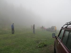 полянката в мъгла