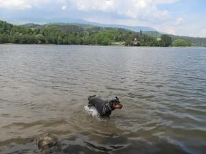 Берра в езерото