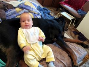 Бебето лежи върху Берра 2