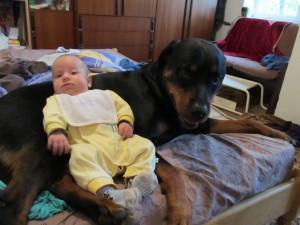 Бебето лежи върху Берра 5